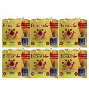 Bộ 6 Hộp Yến sào Bionest Gold Isomalt cao cấp (dành cho người tiểu đường) - hộp tiết kiệm 6 lọ
